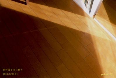 影の透きまに眩う